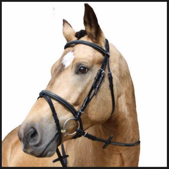 Kentaur Hano Bridle W Decorative Stitching Equine Central
