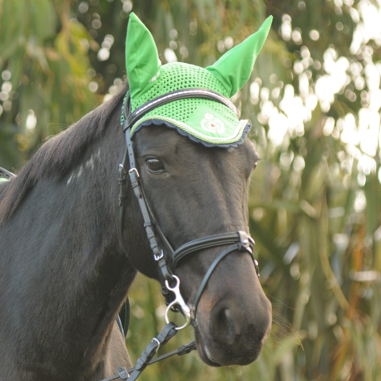 Kentaur Hano Bridle W Decorative Browband Equine Central